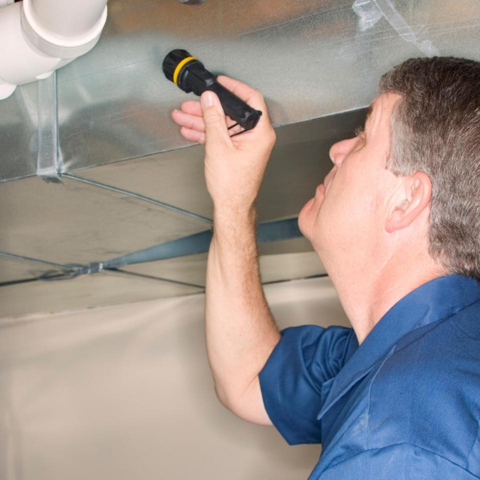 TS-87506305_testing-inspecting-checking-for-mold_s4x3.jpg.rend.hgtvcom.1280.960
